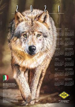 Imagen de Calendario 2021
